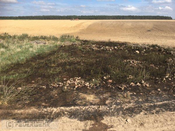 Brandeinsatz vom 09.07.2018  |  (c) Feuerwehr Hohenselchow (2018)